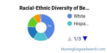 Racial-Ethnic Diversity of Benedictine U Undergraduate Students