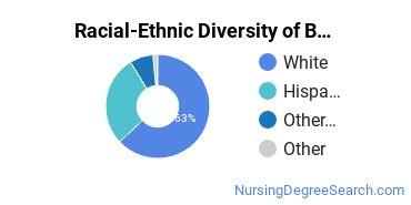 Racial-Ethnic Diversity of BMCC Undergraduate Students
