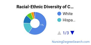 Racial-Ethnic Diversity of CCSU Undergraduate Students