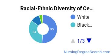Racial-Ethnic Diversity of Central Louisiana Technical Community College Undergraduate Students