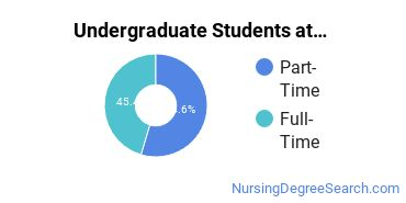 Full-Time vs. Part-Time Undergraduate Students at  COCC