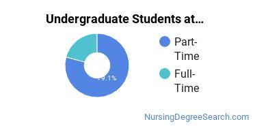 Full-Time vs. Part-Time Undergraduate Students at  Chamberlain - Illinois