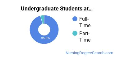 Full-Time vs. Part-Time Undergraduate Students at  Saint Mary