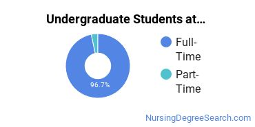 Full-Time vs. Part-Time Undergraduate Students at  Fairfield U