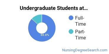 Full-Time vs. Part-Time Undergraduate Students at  Framingham State