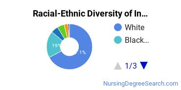 Racial-Ethnic Diversity of Indiana State Undergraduate Students