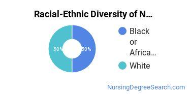 Racial-Ethnic Diversity of Nursing Administration Majors at Indiana University - Purdue University - Indianapolis