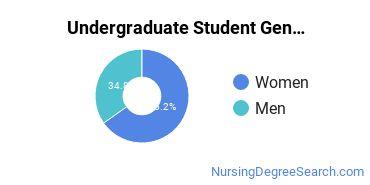 Undergraduate Student Gender Diversity at  Indiana University - South Bend