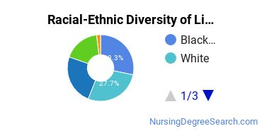 Racial-Ethnic Diversity of Lincoln Tech - Shelton Undergraduate Students