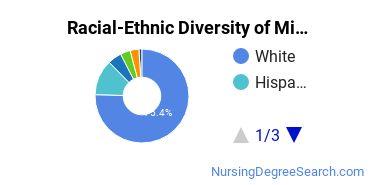 Racial-Ethnic Diversity of Mid-Plains Community College Undergraduate Students