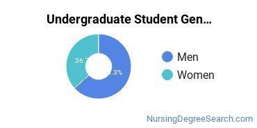 Undergraduate Student Gender Diversity at  New England Tech