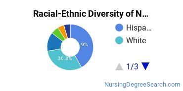 Racial-Ethnic Diversity of NCC Undergraduate Students