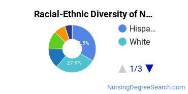 Racial-Ethnic Diversity of Nova Southeastern University Undergraduate Students