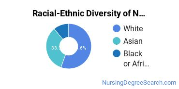 Racial-Ethnic Diversity of Nursing Administration Majors at Olivet Nazarene University