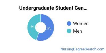 Undergraduate Student Gender Diversity at  Porter and Chester Institute of Branford