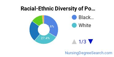 Racial-Ethnic Diversity of Porter and Chester Institute of Branford Undergraduate Students