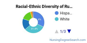 Racial-Ethnic Diversity of Rush University Medical Center Undergraduate Students