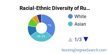 Racial-Ethnic Diversity of Rutgers New Brunswick Undergraduate Students