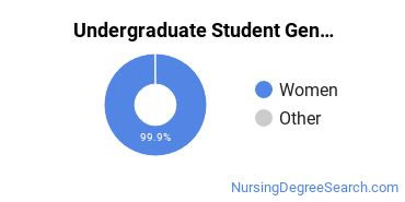 Undergraduate Student Gender Diversity at  Simmons