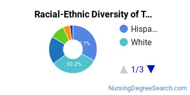Racial-Ethnic Diversity of TWU Undergraduate Students