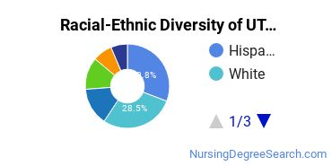 Racial-Ethnic Diversity of UT Arlington Undergraduate Students