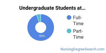 Full-Time vs. Part-Time Undergraduate Students at  Touro University Nevada