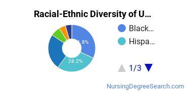 Racial-Ethnic Diversity of UBridgeport Undergraduate Students