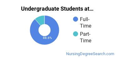 Full-Time vs. Part-Time Undergraduate Students at  UHart