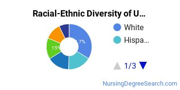 Racial-Ethnic Diversity of UMass Boston Undergraduate Students
