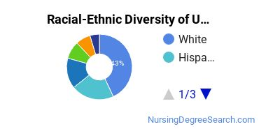 Racial-Ethnic Diversity of U Miami Undergraduate Students