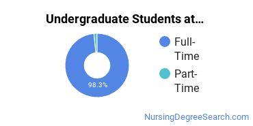 Full-Time vs. Part-Time Undergraduate Students at  Valpo