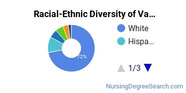 Racial-Ethnic Diversity of Valpo Undergraduate Students