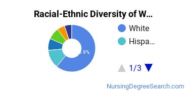 Racial-Ethnic Diversity of Wagner Undergraduate Students