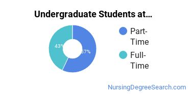 Full-Time vs. Part-Time Undergraduate Students at  WNCC