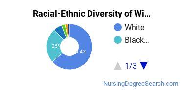 Racial-Ethnic Diversity of William Carey University Undergraduate Students