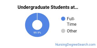 Full-Time vs. Part-Time Undergraduate Students at  Yale