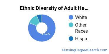 Adult Health Nursing Majors in WI Ethnic Diversity Statistics