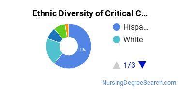 Critical Care Nursing Majors in FL Ethnic Diversity Statistics
