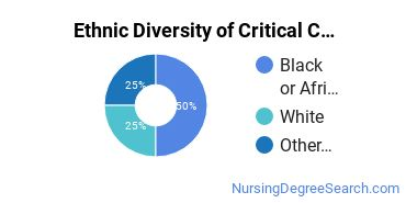 Critical Care Nursing Majors in GA Ethnic Diversity Statistics