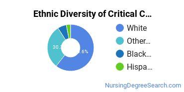 Critical Care Nursing Majors in NJ Ethnic Diversity Statistics