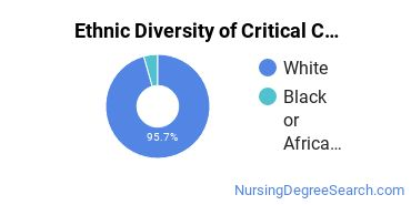 Critical Care Nursing Majors in SC Ethnic Diversity Statistics