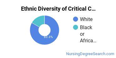 Critical Care Nursing Majors in WI Ethnic Diversity Statistics