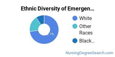 ER/Trauma Nursing Majors in GA Ethnic Diversity Statistics