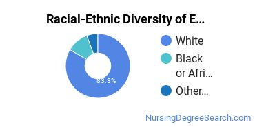 Racial-Ethnic Diversity of Emergency Room/Trauma Nursing Master's Degree Students