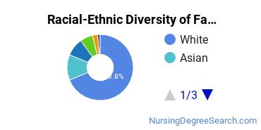 Racial-Ethnic Diversity of Family Practice Nursing Students with Bachelor's Degrees
