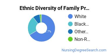 Family Practice Nursing Majors in DE Ethnic Diversity Statistics