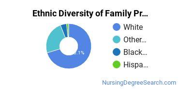 Family Practice Nursing Majors in ME Ethnic Diversity Statistics