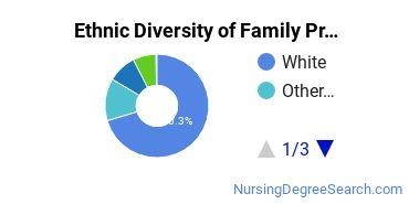 Family Practice Nursing Majors in MA Ethnic Diversity Statistics