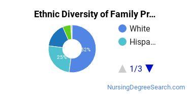 Family Practice Nursing Majors in TX Ethnic Diversity Statistics