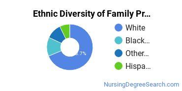 Family Practice Nursing Majors in VA Ethnic Diversity Statistics